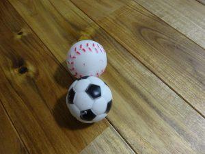 犬、ボール、おもちゃ