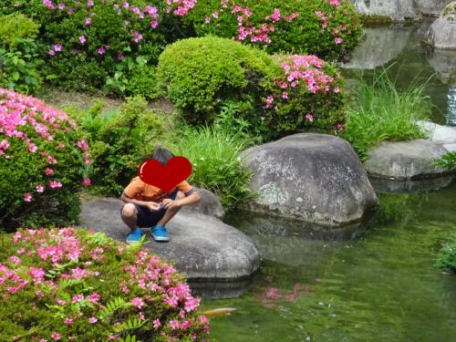 大江戸温泉,ホテル新光,日本庭園,鯉,
