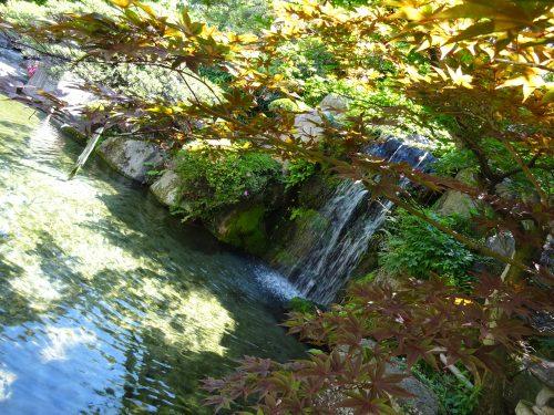 大江戸温泉,ホテル新光,滝,