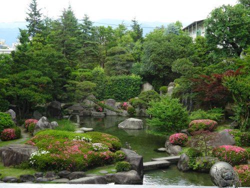 大江戸温泉,新光,池