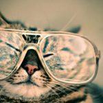 眼鏡市場クーポンで割引価格に!お得にメガネを買いましょう。
