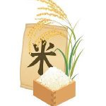 米通販格安,米通販激安,米通販アウトレット,米通販Amazon,米Amazon,米アウトレットAmazon,米安い,お米安い通販