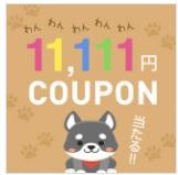 ニッセンクーポン10,000円