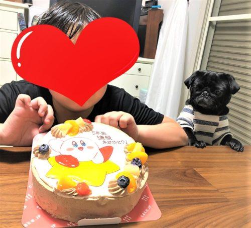 ケーキJP口コミ