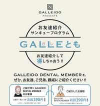ガレイドスマートフード(GALLEIDO SMART FOOD)ガレトモ