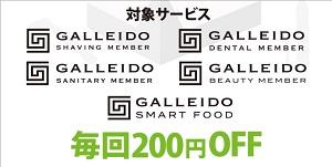 ガレイドスマートフード(GALLEIDO SMART FOOD)同梱割